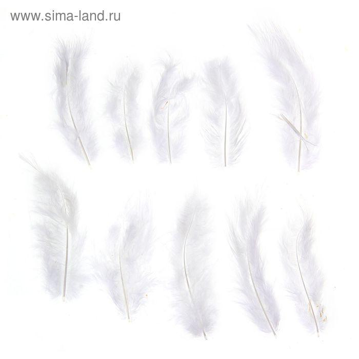 Набор перьев для декора 10 шт, размер 1 шт 10*2 цвет белый