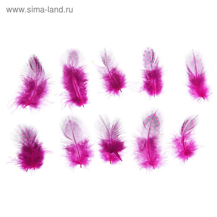 Набор перьев для декора 10 шт, размер 1 шт 5*2 цвет розовый с черным