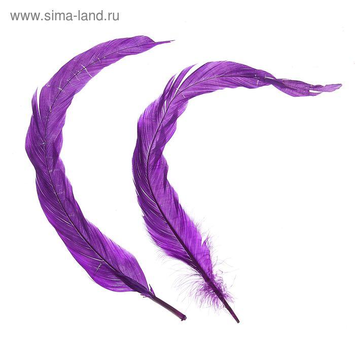 Набор перьев для декора 2 шт, размер 1 шт 30*3 цвет сиреневый