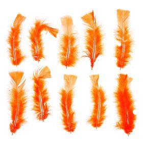 Набор перьев для декора 10 шт, размер 1 шт 16*4 цвет оранжевый