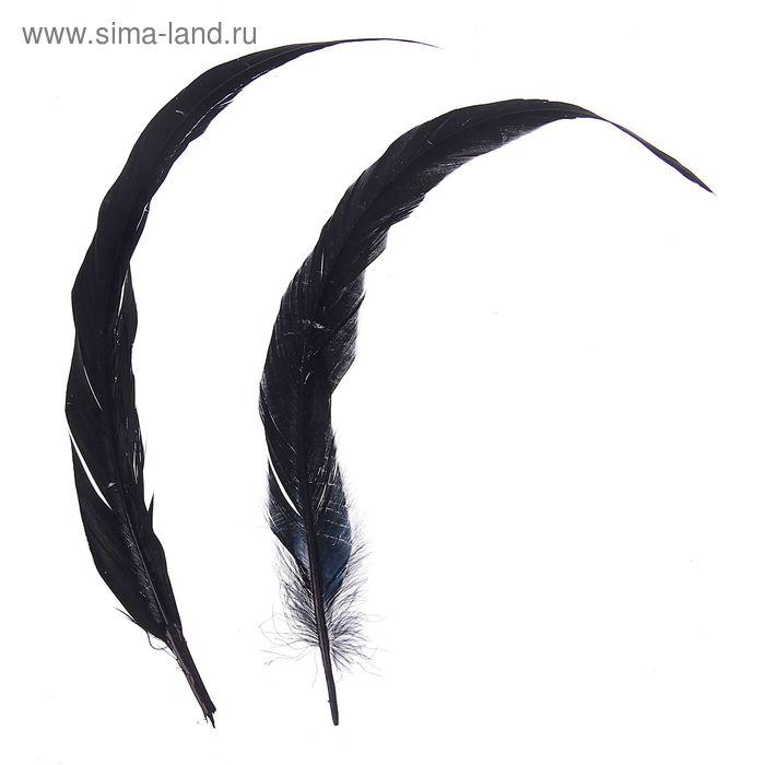 Набор перьев для декора 2 шт, размер 1 шт 30*3 цвет черный