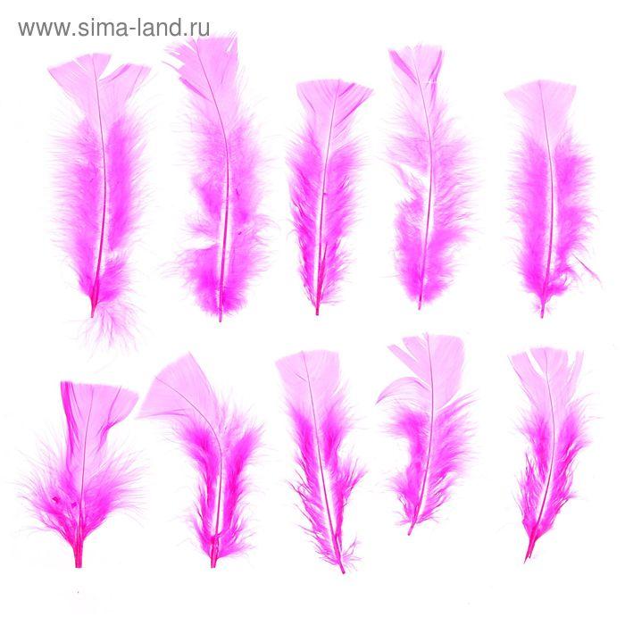 Набор перьев для декора 10 шт, размер 1 шт 16*4 цвет ярко розовый