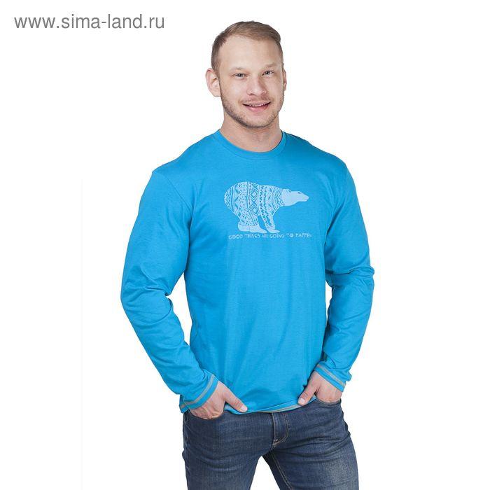 Джемпер мужской, цвет голубой, размер 50 (арт. 20467П-28020)