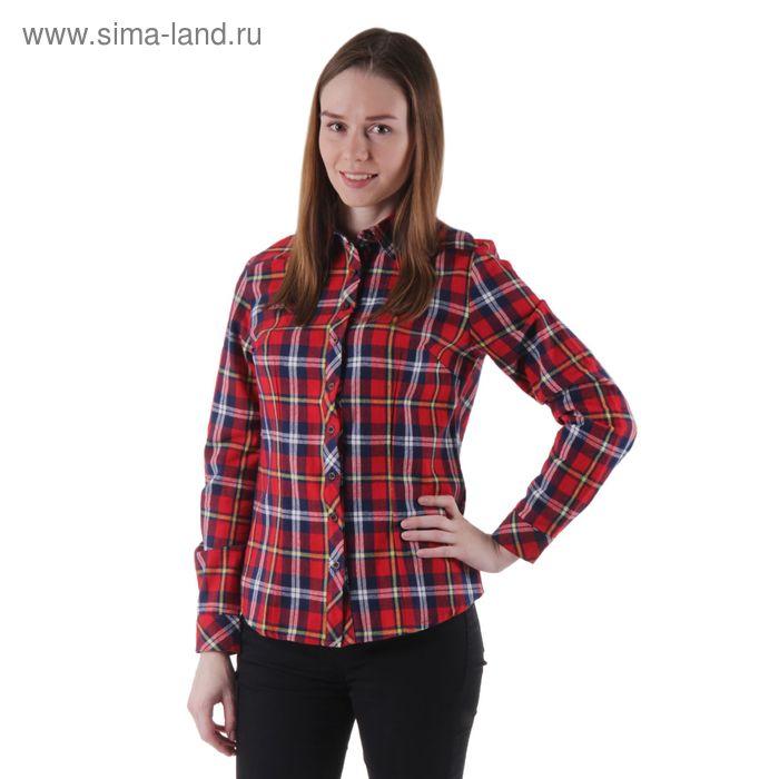 Блузка женская с длинным рукавом, размер 50, рост 170 см, красно-синяя клетка (арт. 15129 С+)