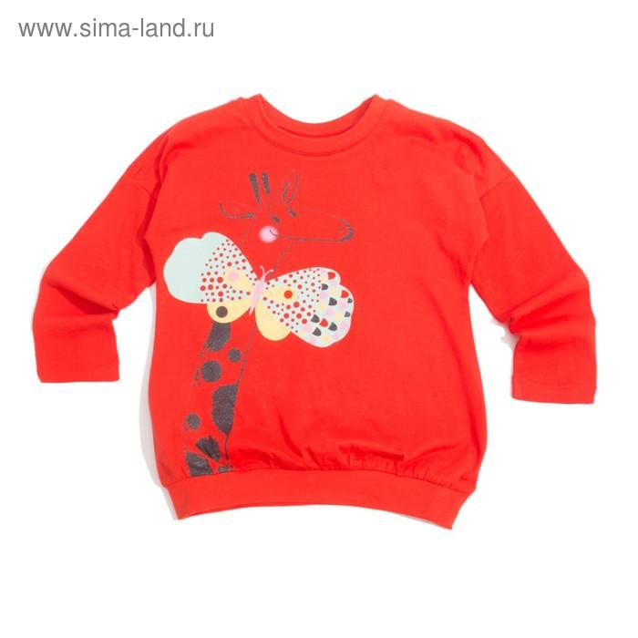 Джемпер для девочки, рост 116 см (60), цвет красный_160080