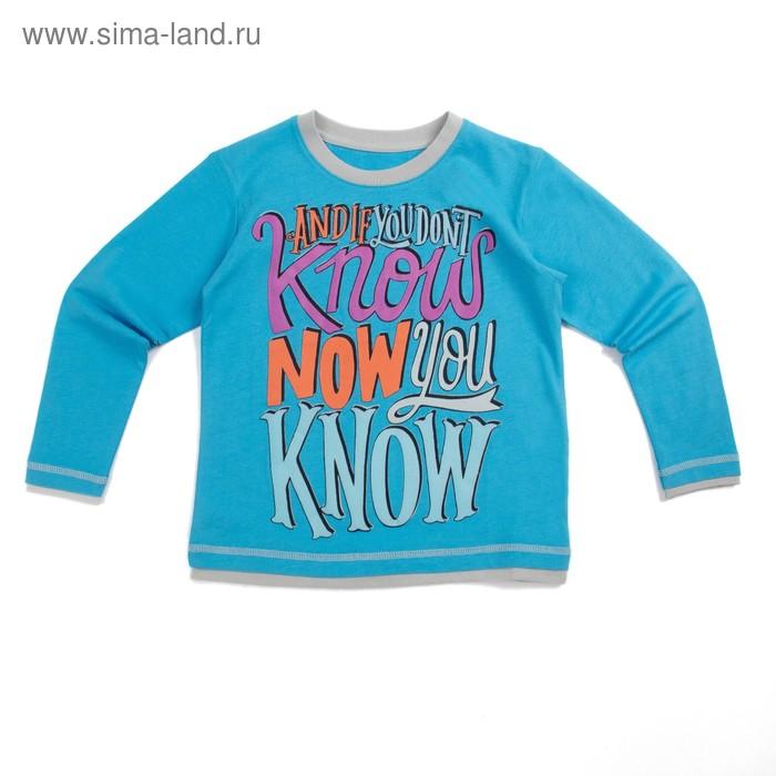 Джемпер для мальчика, рост 98 см (56), цвет голубой_160092