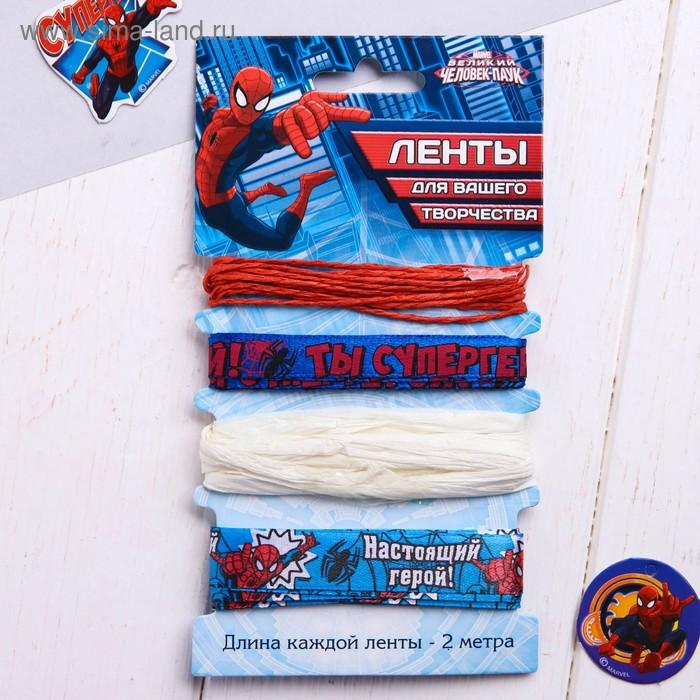 """Набор декоративных лент """"Настоящий герой"""", Человек-Паук, 2 м"""