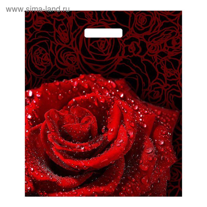 """Пакет """"Пурпурная роза"""", полиэтиленовый с вырубной ручкой, 45х38 см, 60 мкм"""
