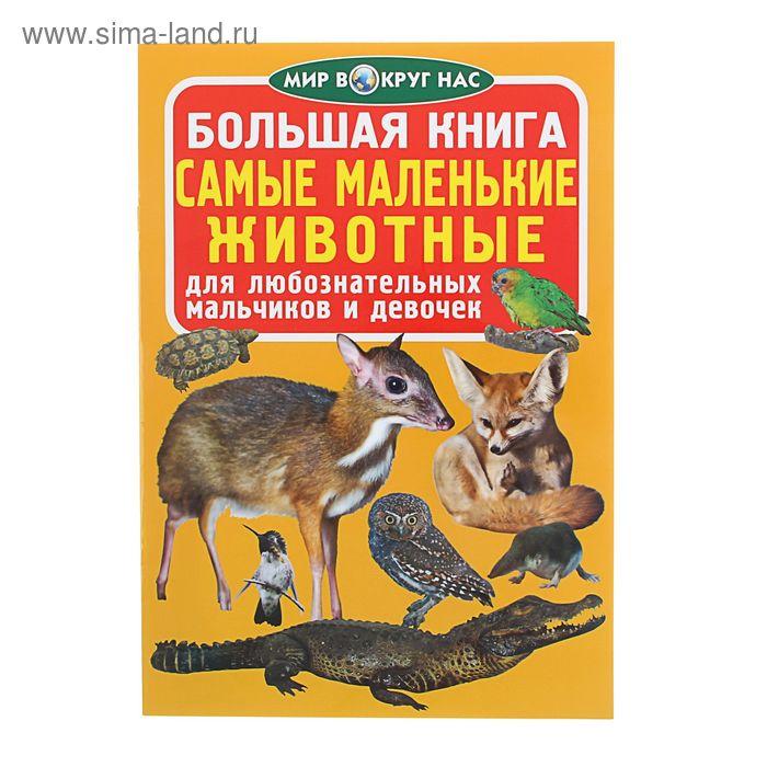 Большая книга «Самые маленькие животные»
