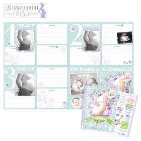 Плакат будущей мамочки в папке '9 месяцев в ожидании чуда' для вклейки фото и записей на каждый месяц + наклейки Ош