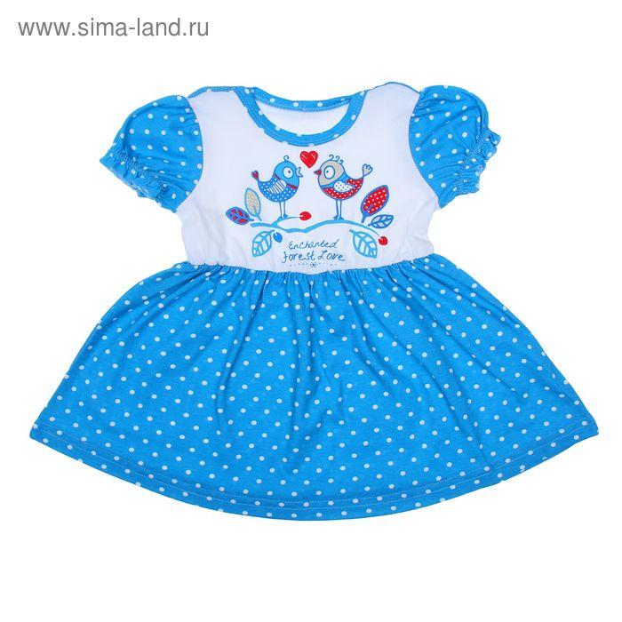 """Платье для девочки """"Птички на ветке"""", рост 92 см (54), цвет белый+синий горох ДПК881001н"""