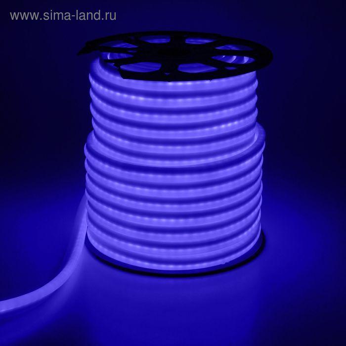 Гибкий неон, 12*24мм, 50 м, LED/м-80-220V, СИНИЙ УЦЕНКА
