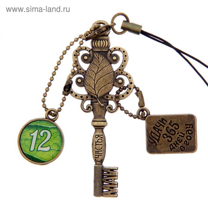 """Ключ сувенирный """"12 Мая"""", серия 365 дней"""