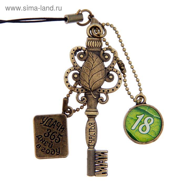 """Ключ сувенирный """"18 Мая"""", серия 365 дней"""