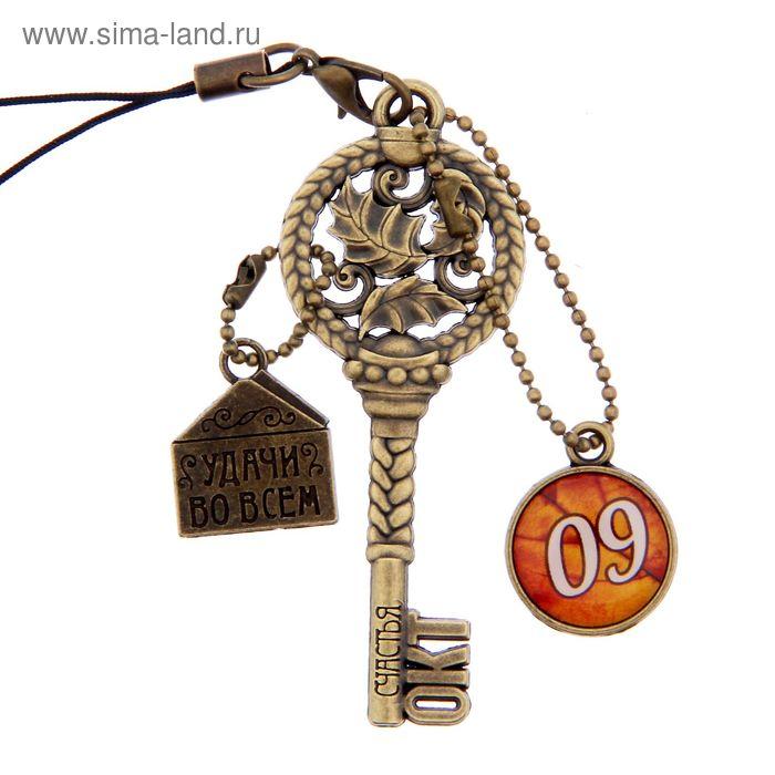 """Ключ сувенирный """"9 Октября"""", серия 365 дней"""