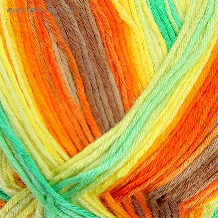 "Пряжа ""Bamboo Fine Batik"" 100% бамбук, 440м/100гр (4559)"