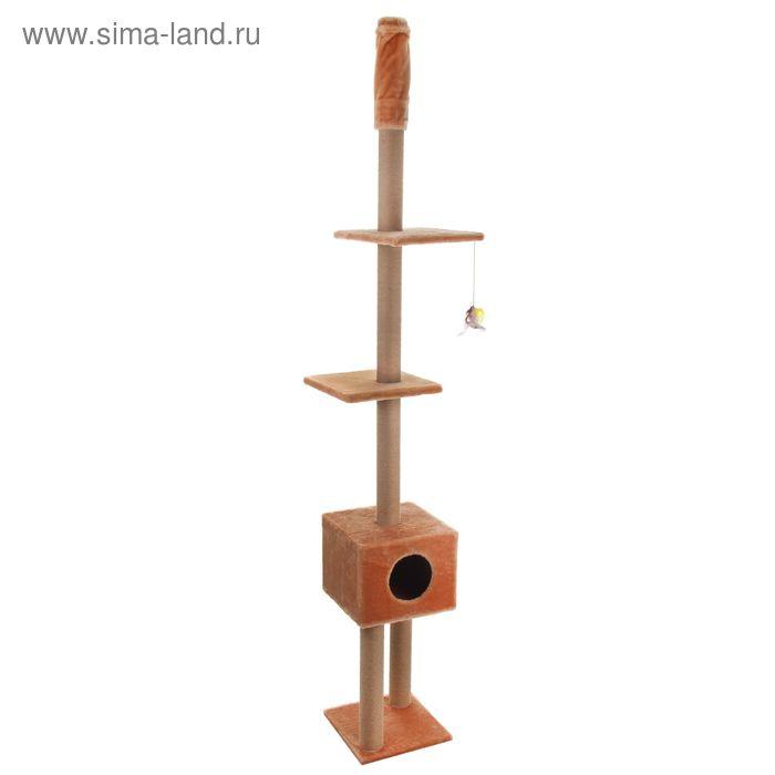 """Домик-когтеточка до потолка """"Труба с полками"""", 255-265 х 37 х 37 см, микс цветов"""