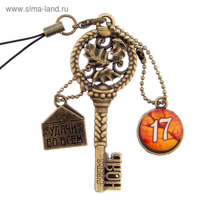 """Ключ сувенирный """"17 Ноября"""", серия 365 дней"""