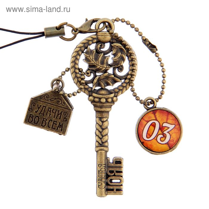 """Ключ сувенирный """"3 Ноября"""", серия 365 дней"""
