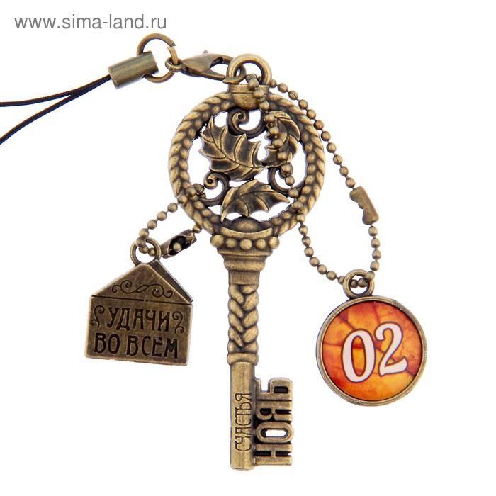 """Ключ сувенирный """"2 Ноября"""", серия 365 дней"""