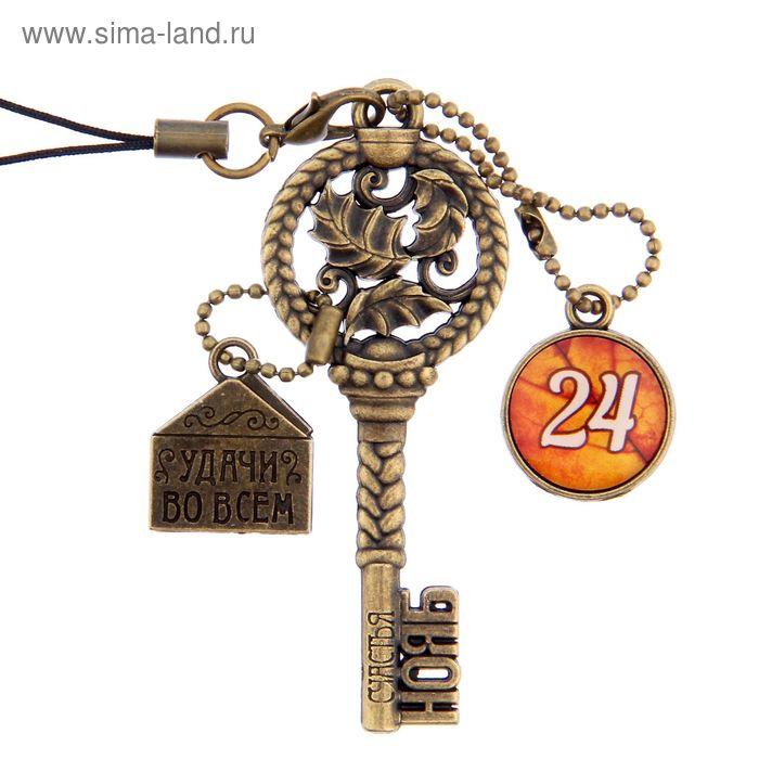"""Ключ сувенирный """"24 Ноября"""", серия 365 дней"""