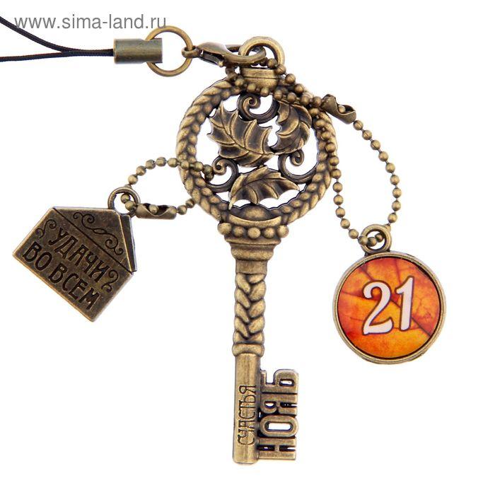 """Ключ сувенирный """"21 Ноября"""", серия 365 дней"""