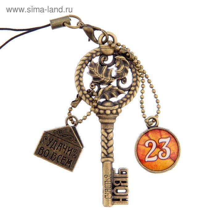 """Ключ сувенирный """"23 Ноября"""", серия 365 дней"""