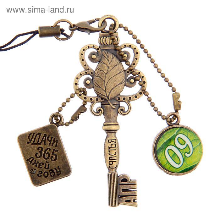 """Ключ сувенирный """"9 Апреля"""", серия 365 дней"""
