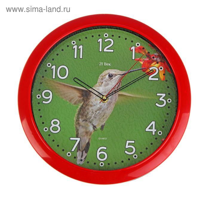 """Часы настенные круглые """"Колибри"""", 30 см"""