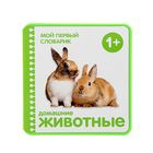 """Мой первый словарик """"Домашние животные"""" (EVA). Автор: Краснушкина Е.Е."""
