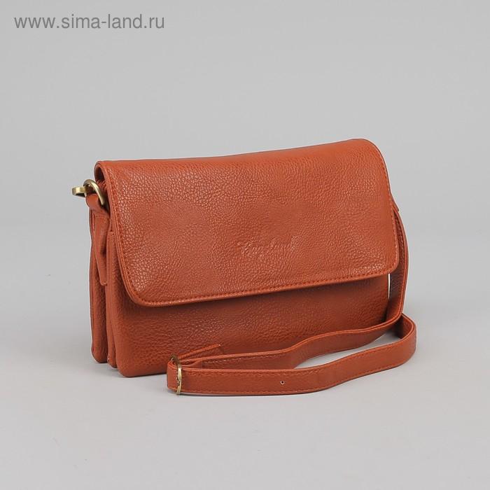 Сумка женская на молнии, 3 отдела, 1 наружный карман, коричневая