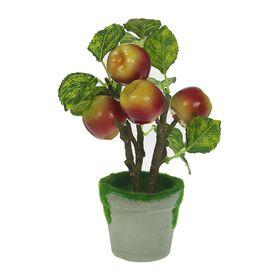 Бонсай 'Дерево с яблоками' красно-зелёные Ош