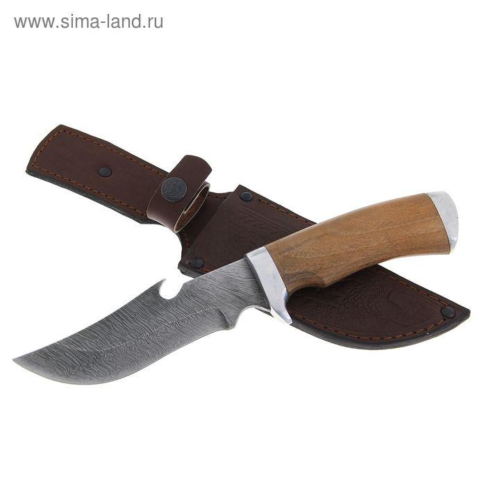 """Нож нескладной """"Егерь"""" СТ-16, г.Павлово, дамасская сталь, рукоять-орех"""