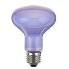 Лампа day light basking spot R20 100Вт
