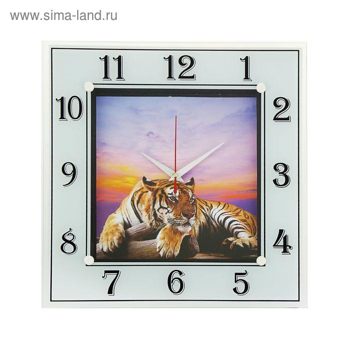 """Часы настенные квадратные """"Тигр"""", 31 см"""