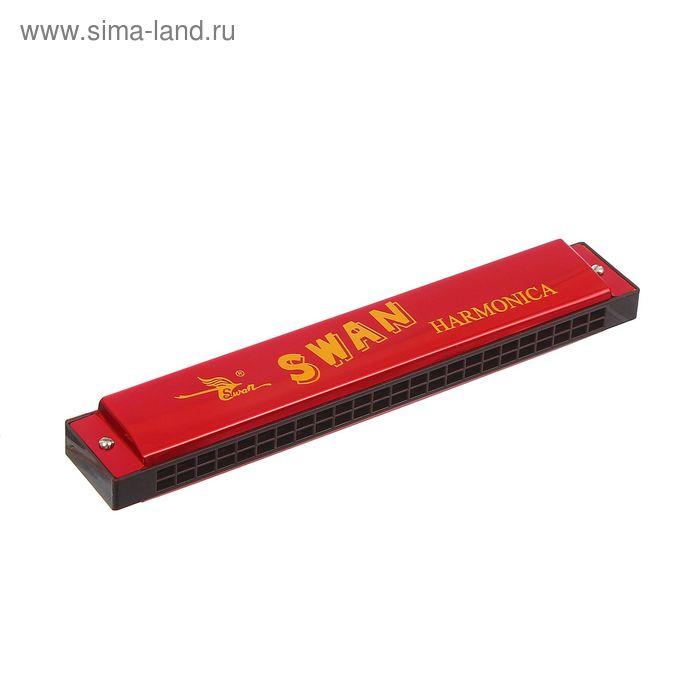 Губная гармоника Swan SW24-2 (NH13-402B), красная