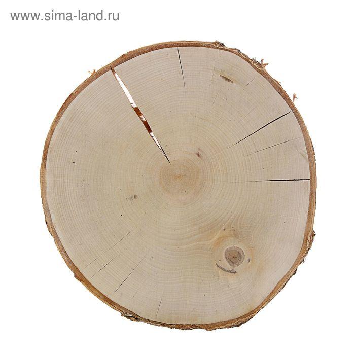 Спил берёзы шлифованный (d 25-30 см)