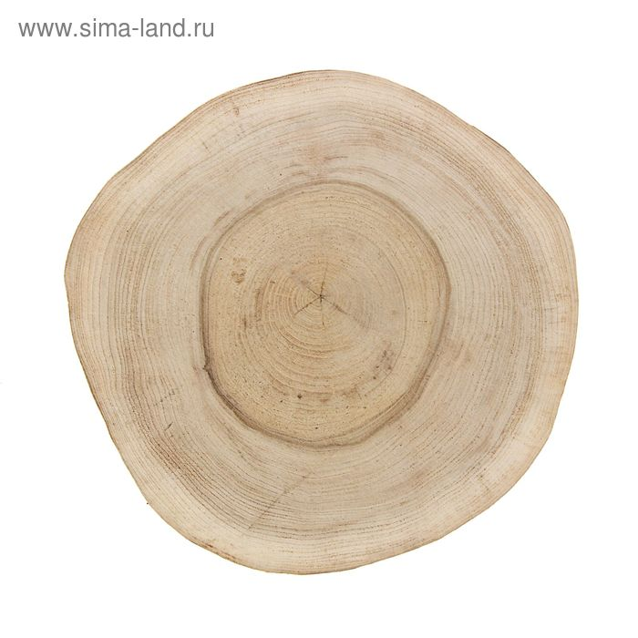 Спил вяза шлифованный (d 25-30 см)