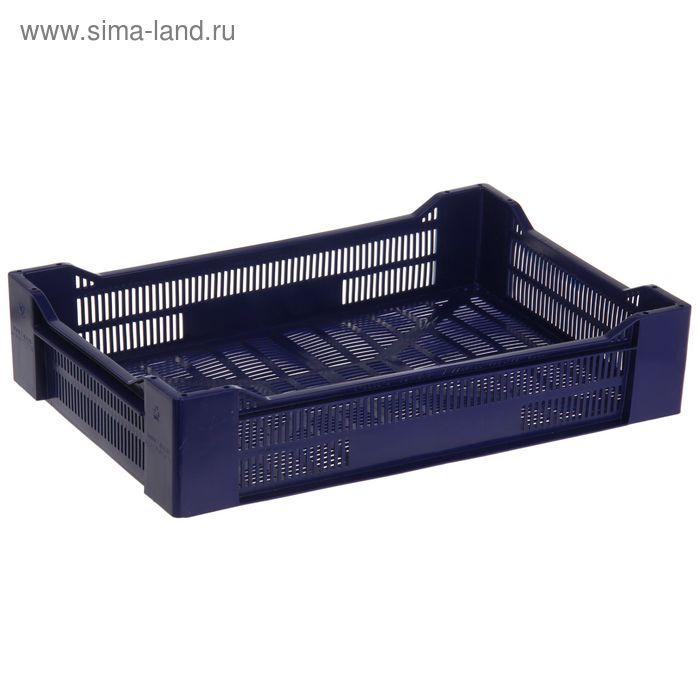 """Ящик п/э 60х40х13,5 см """"Ягодный"""", цвет синий"""