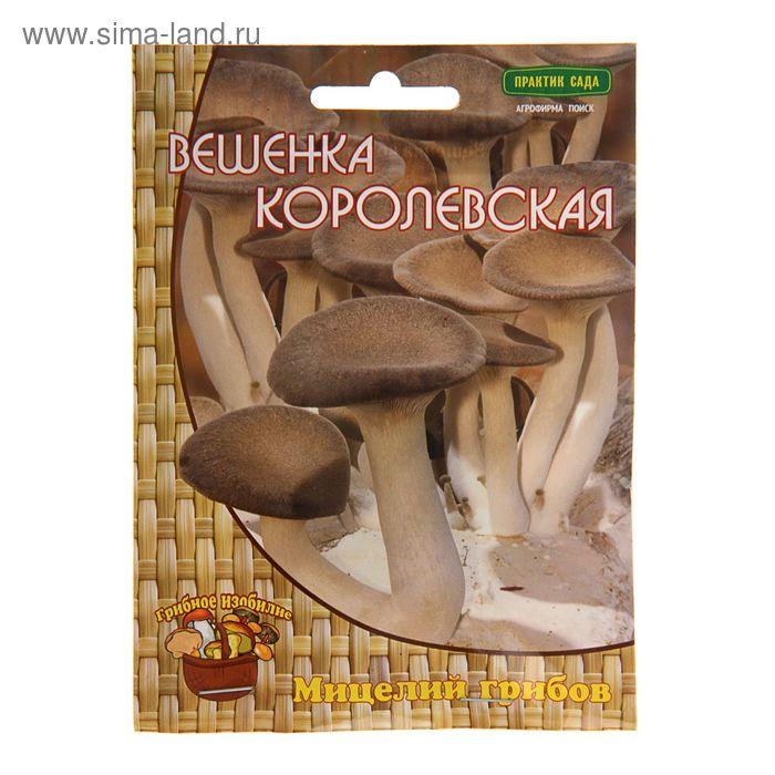 Мицелий на древесном носителе Вешенка Королевская, 12 шт