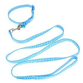 Комплект шириной 1 см с ошейником до 32 см, поводок 120 см, непрошитый, бело-голубой