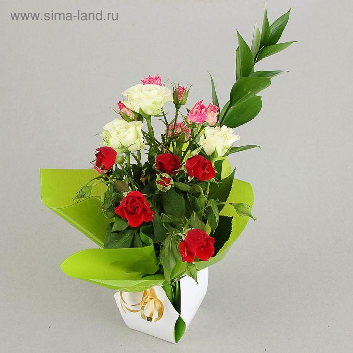 Коробка для цветов 2в1, 12х17 см, сборная, салатовый