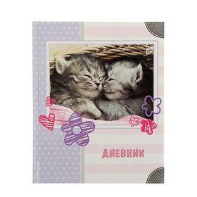 """Дневник для 1-4 класс """"Кошечки"""", твердая обложка, глянцевая ламинация, 48л"""