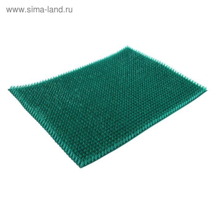 """Покрытие ковровое щетинистое 45х60 см """"Травка"""", цвет аквамарин"""