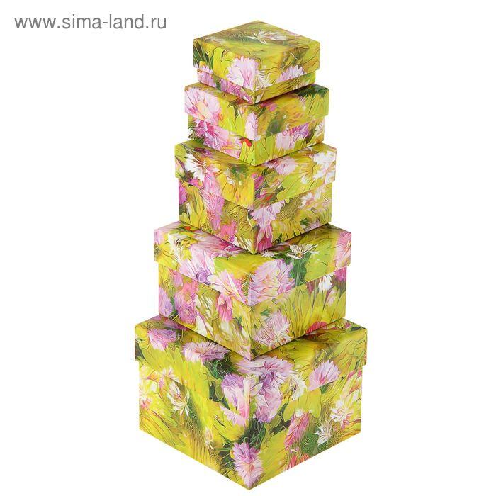 """Набор коробок 5 в 1 """"Фантазия"""""""