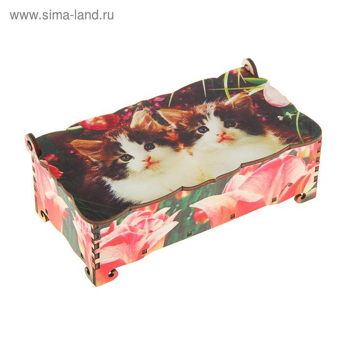 Шкатулка - купюрница «Коты», 17х9х5,8 см