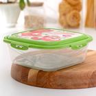 Контейнер пищевой 1,55 л с герметичной крышкой Click&Lock, цвет МИКС
