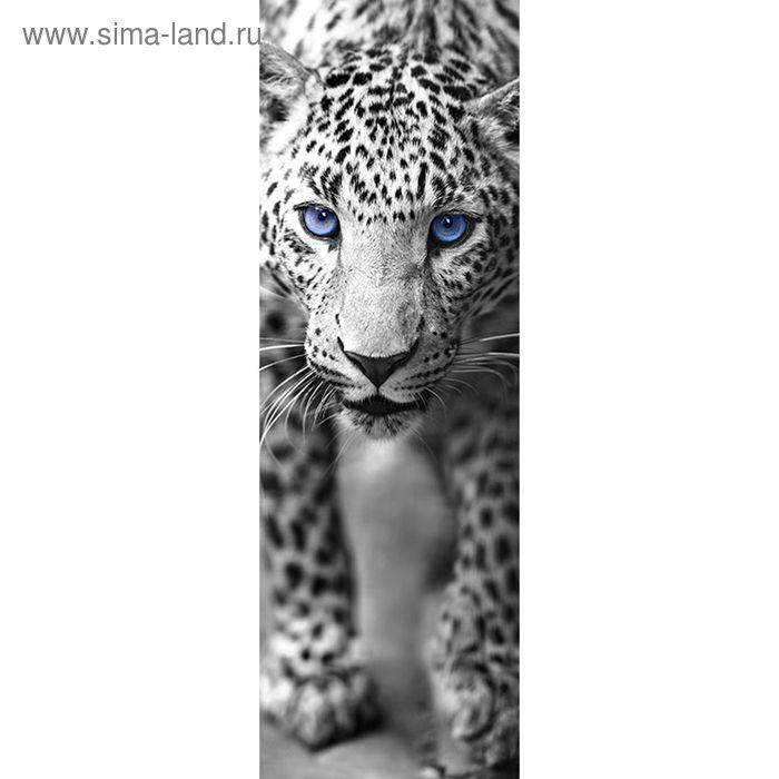 "Фотообои ""Леопард чёрно-белый"", 0,9х2,7 м"