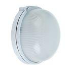 Светильник TDM НПБ1301, 60 Вт, IP54, круглый, белый, SQ0303-0030