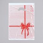 """Пакет """"Красная клетка"""", полиэтиленовый с вырубной ручкой, 22х30 см, 12 мкм"""